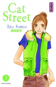 cat-street-t3