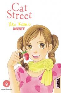 cat-street-t6