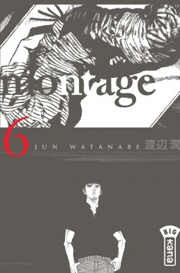 montage-tome-6